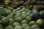 Melons by the dozen