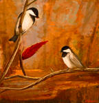 Black-capped Chickadees in Fall