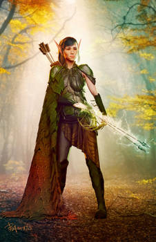 Wood Elf Arcane Archer