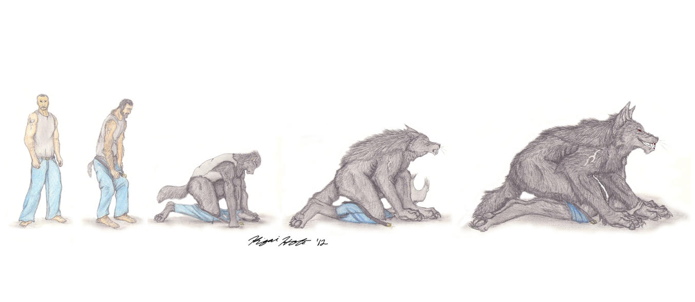 Werewolf Transformation Sequence Transformation Sequence by