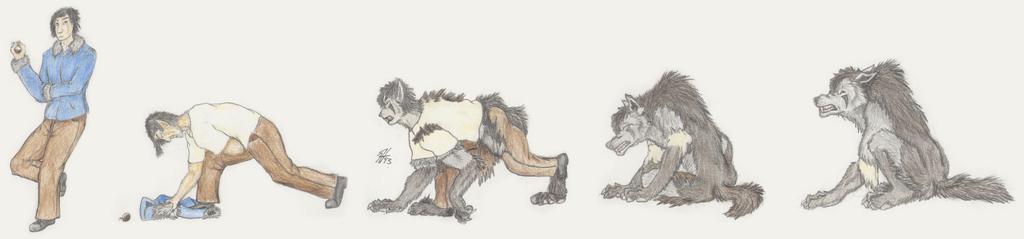 Wolf Transformation Sequence Somemuttupnorth...