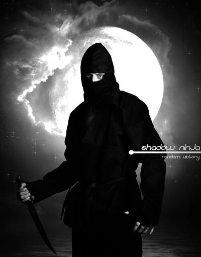 Shadow ninja by random-victory