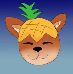 Pineapple Corgi