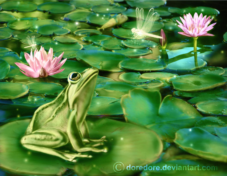 Frog Swamp by doredore