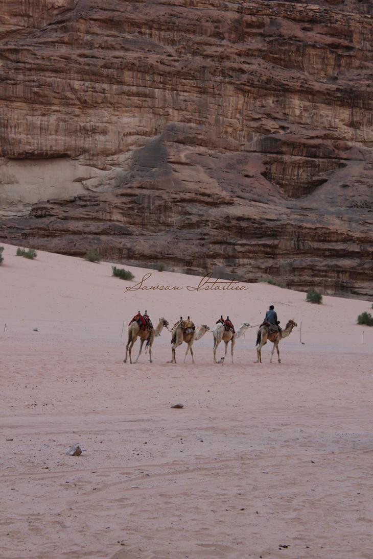 The Caravan by doredore