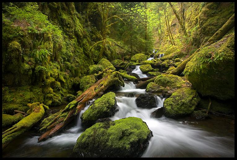 Moss Canyon by MarcAdamus