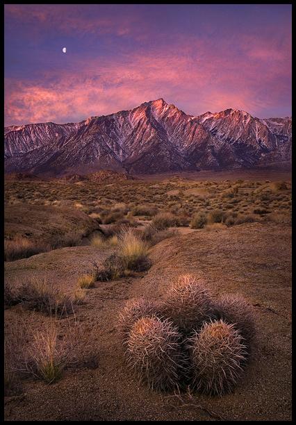 Desert Range by MarcAdamus