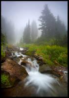 Fog, Falls and Flowers by MarcAdamus