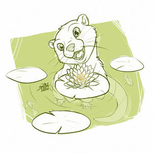 Water lily (sketch)