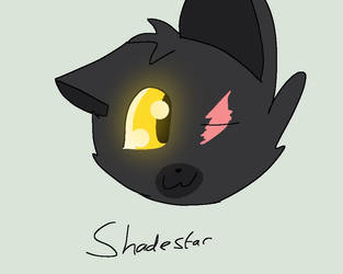 CLASHOFTHEWARRIORS GROUP SHADESTAR LEADER by PaintedGems