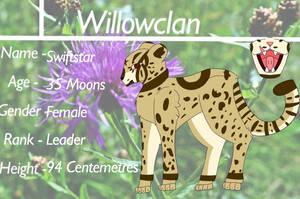 Willowclan Leader - Swiftstar