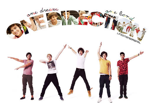 One dream, One band One Direction