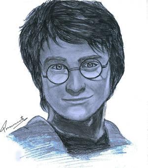 portrait of harry potter