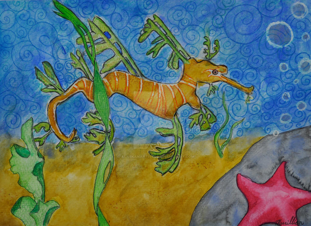 Leafy Sea Dragon by alaskanartist49 on DeviantArt