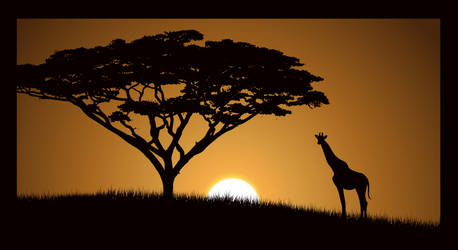 Sunset in Africa