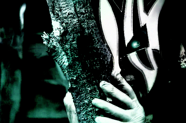 Second willow wallpaper TNA by Jeff Hardy Willow The Wisp Wallpaper