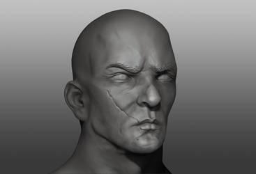Sculpt Face Practice by Zarius-Arts