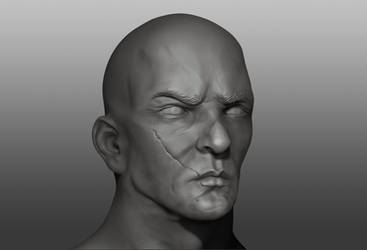 Sculpt Face Practice by Zarius-Arts