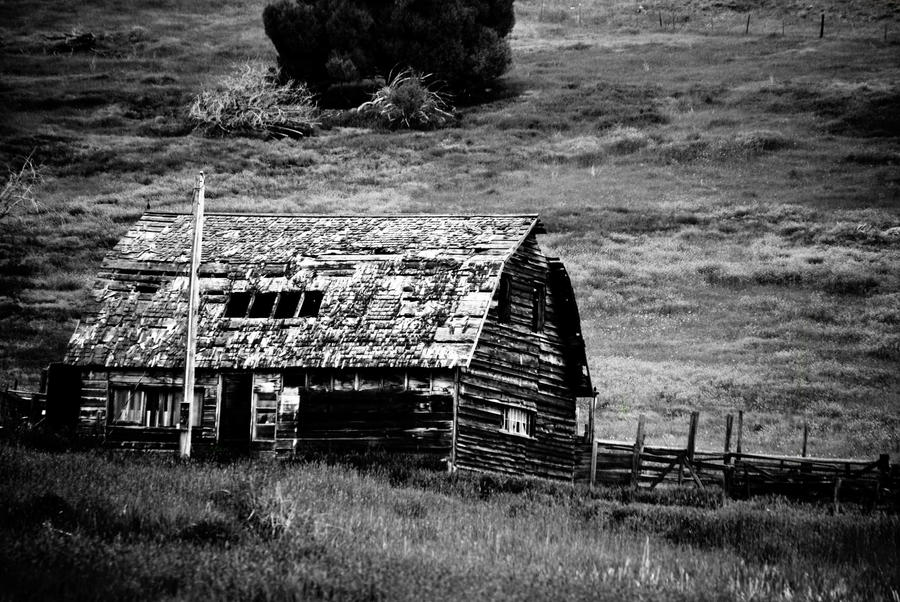 Old Barn Black And White By Appyriderwithspots