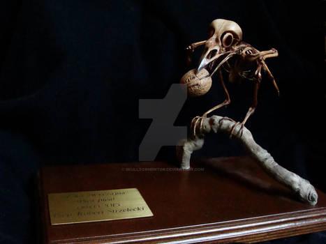 Sroka (Pica pica) Szkielet ~~ Skeleton.