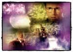 Stargate - Crystal Skull0