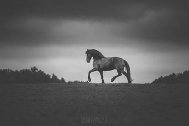 Galiny 02 by silvena