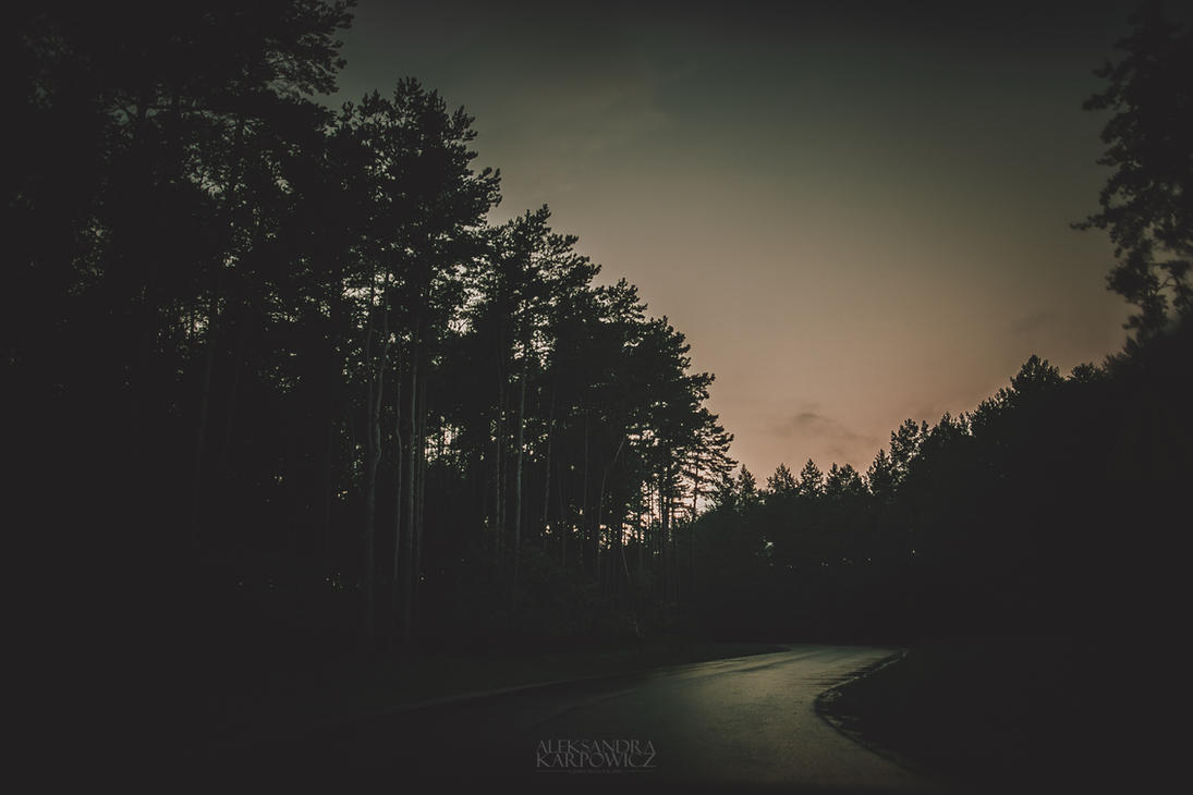 road to my place by silvena