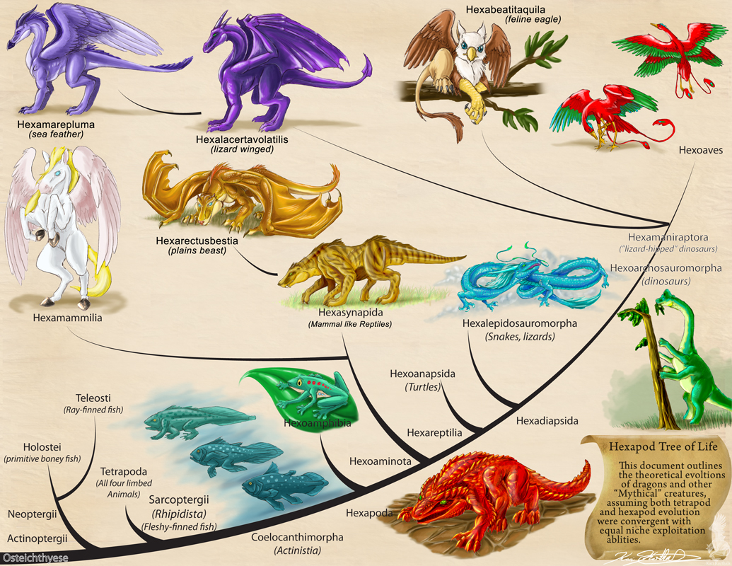 Hexapod tree of life by YamiGriffin on DeviantArt