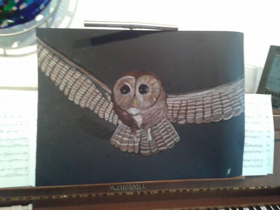 Owl by Rho96