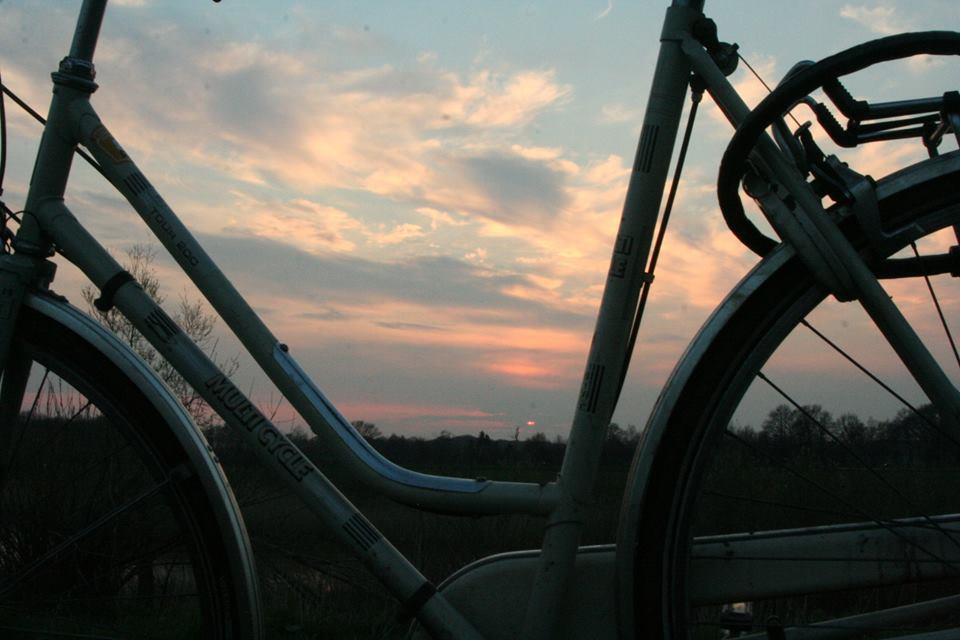 Bike by Rho96