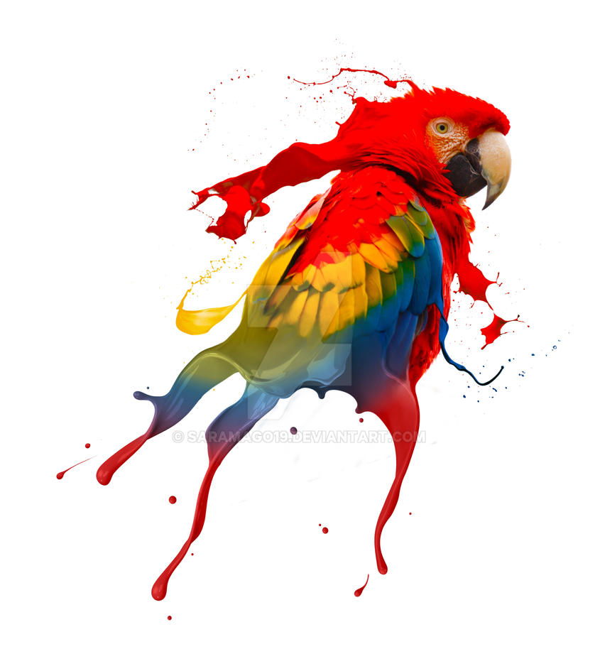 Birds Glass Painting Images