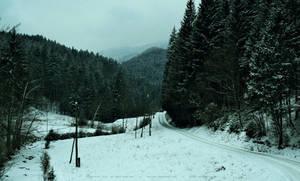 Snow by xTernal7
