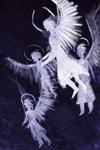Angels [speedpaint]