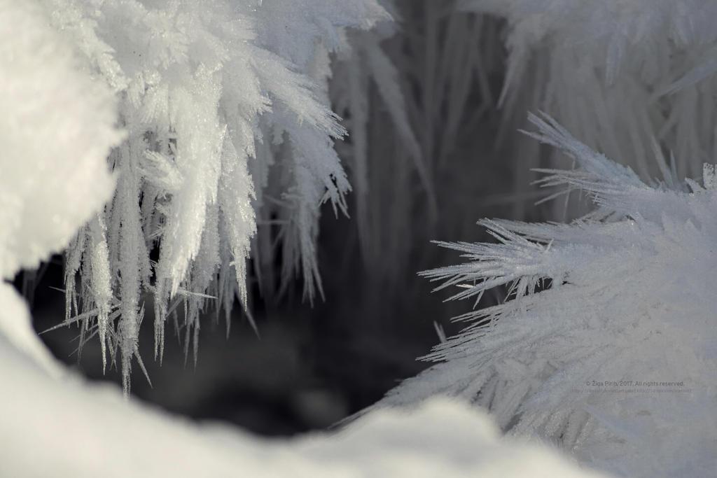 Frost by xTernal7