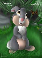 Thumper by Velvet-Loz