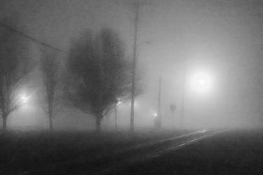 Fog crossing-2