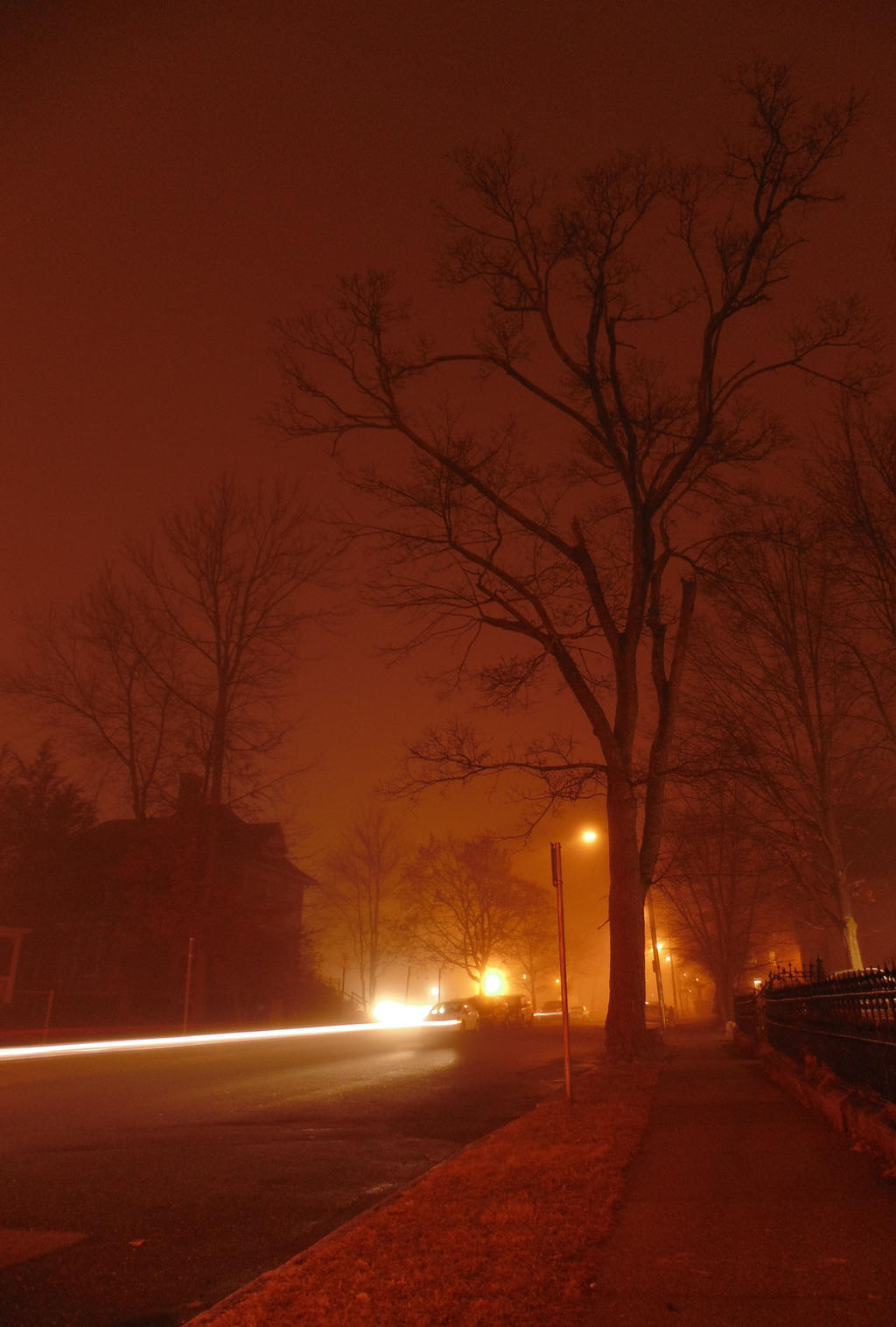 Foggy night - Electric lights by Lunarsight
