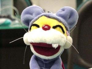 Missfed's Profile Picture