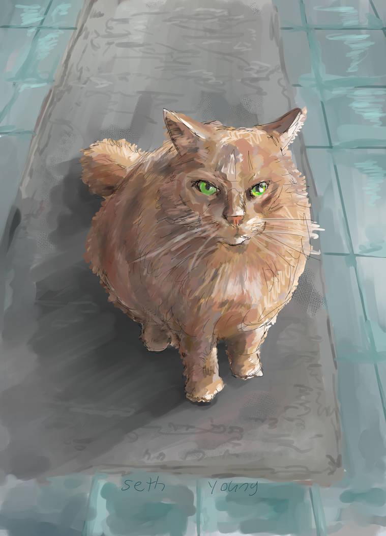 Cat commission by 08yo8387