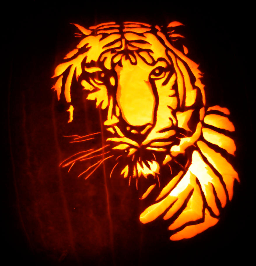 Tiger carve by masonfetzer on deviantart