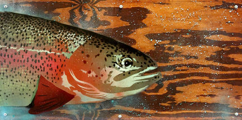 Here Fishy by masonfetzer