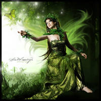Fairly forrest fairy