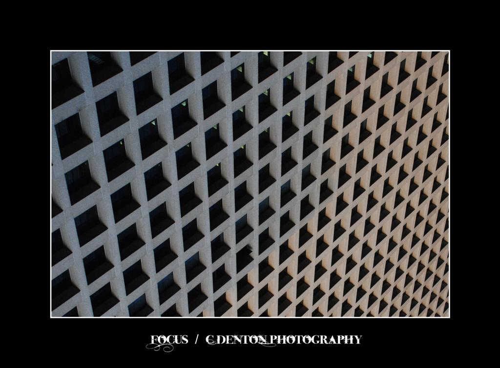 .029 - Focus by C-Denton-Photography
