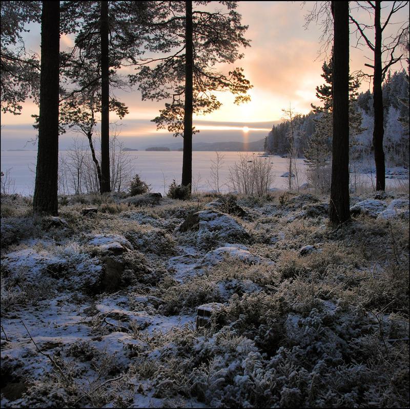 Northen morning