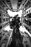 Urban Flowers by endegor