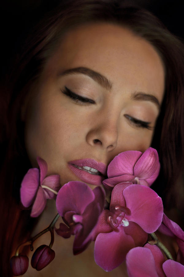 Night Orchid II