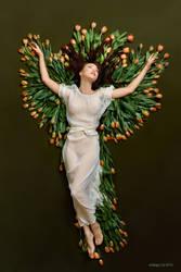 Phoenix by endegor
