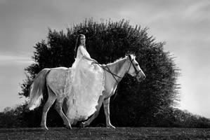 The Bride by endegor