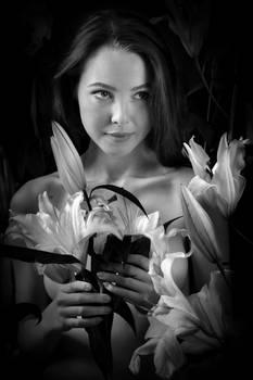 Virgin Lily