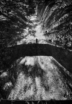 Self-portrait in shadows